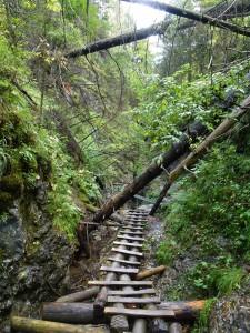 Slovensky Raj typical maintenance of the trail (c) Laura Preston