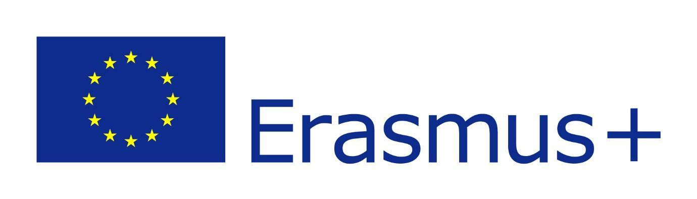 EU flag Erasmus vect POS