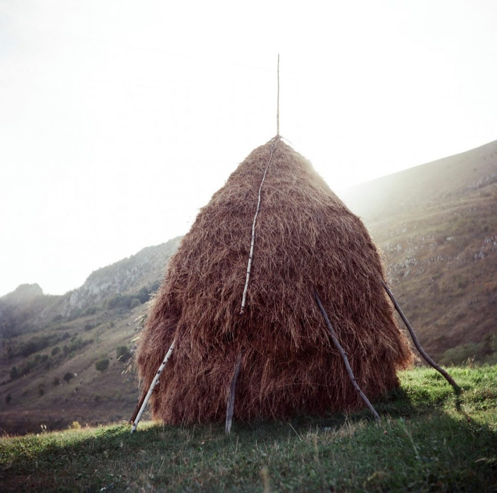 C:\Users\inrc\Documents\Romania\Yashica images\Hay stack.jpg